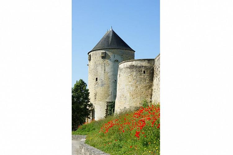 Tour du prince de galles patrimoine Thouars Thouarsais compresse3.jpg_3