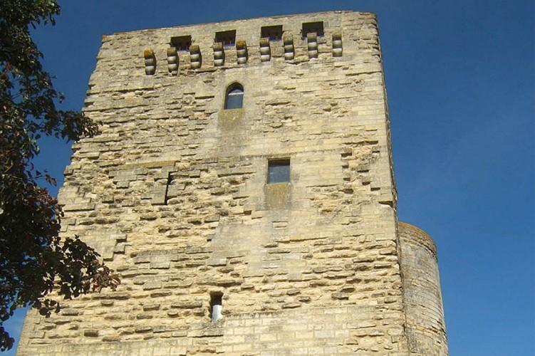 Tour porte au prévost patrimoine bati Thouars Thouarsais.jpg_3