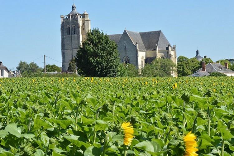 collégiale église saint maurice oiron patrimoine thouarsais Nouvelle Aquitaine.JPG_5