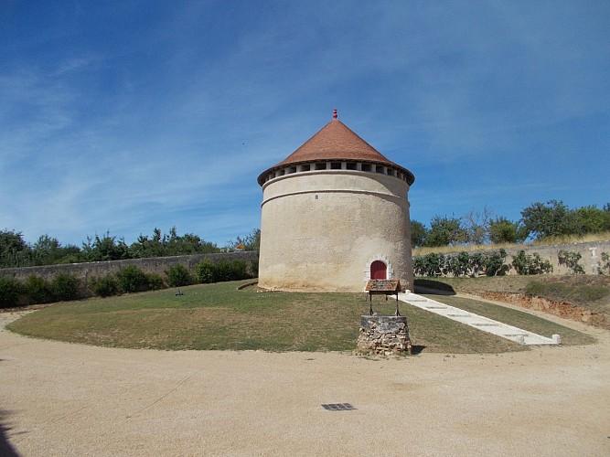 Chateau-St-Loup--8-