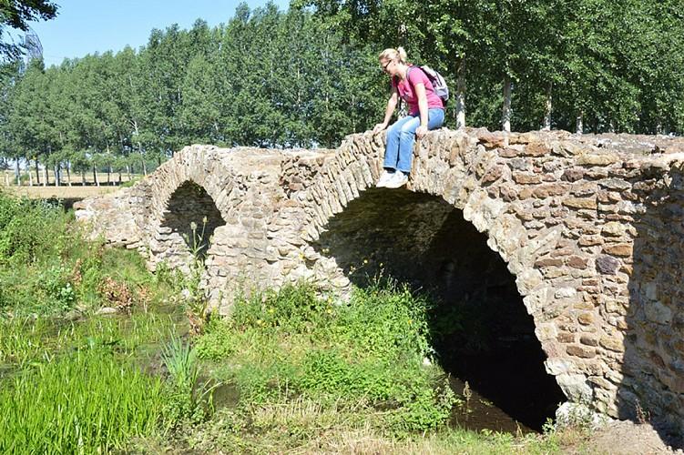 Pont de la reine blanche patrimoine Saint Martin de Macon Thouarsais Nouvelle Aquitaine.JPG_1