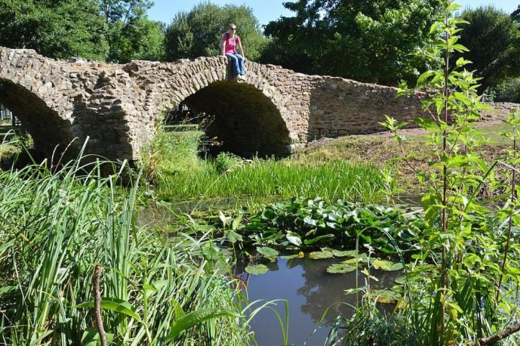 Pont de la reine blanche patrimoine Saint Martin de Macon Thouarsais Nouvelle Aquitaine.JPG_2