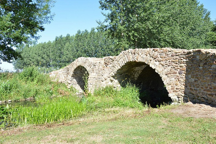 Pont de la reine blanche patrimoine Saint Martin de Macon Thouarsais Nouvelle Aquitaine.JPG_3