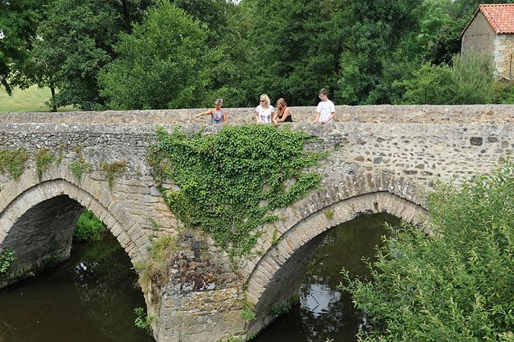 vieux pont Saint Varent patrimoine Thouars Thouarsais Nouvelle Aquitaine.JPG_1