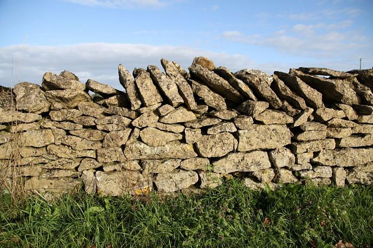 Un muret en pierres sèches