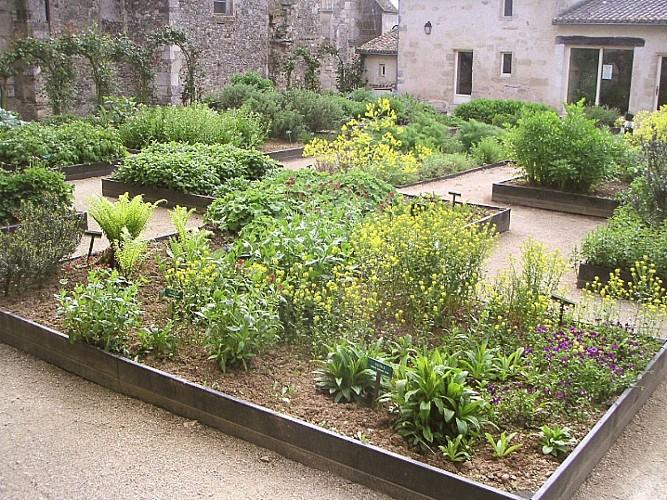 Jardin médicinal St Marc 2.jpg_2