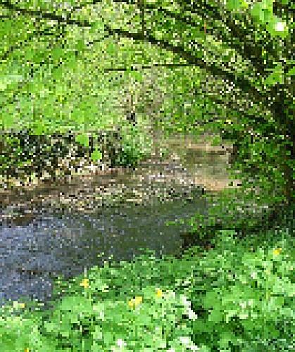 ruisseau-moulin-bertrand-fiche-curiosite