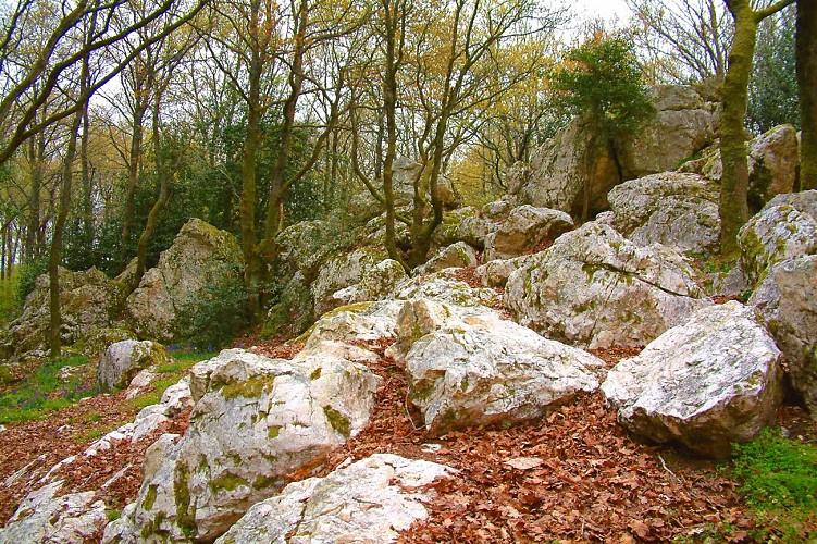rochers de Pyrome - Photo Club Mauléonais.jpg_1