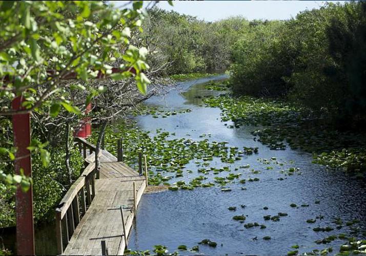 Billet Everglades Safari Park - Parc, promenade et tour en airboat à proximité de Miami