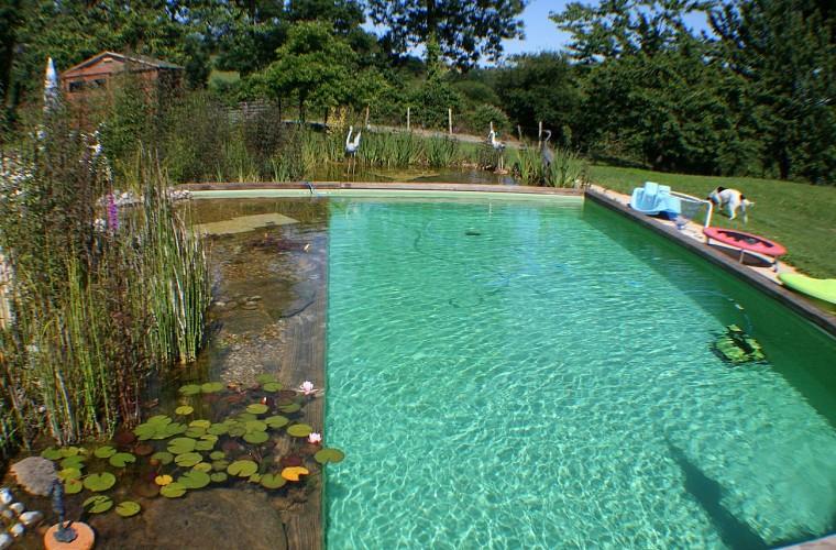 saint-paul-en-gatine-gites-au-cocorico-au-marcassin-piscine-bis.jpg_9