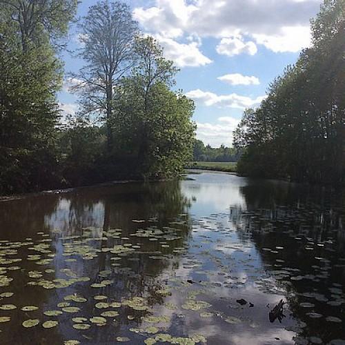 Le moulin du Grand Pont-rivièrre-sit.jpg_3
