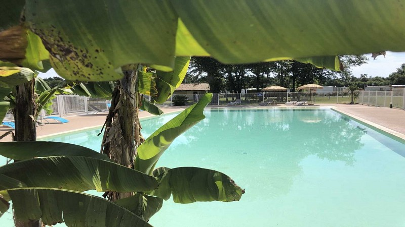 camping-las-chancas-piscine2