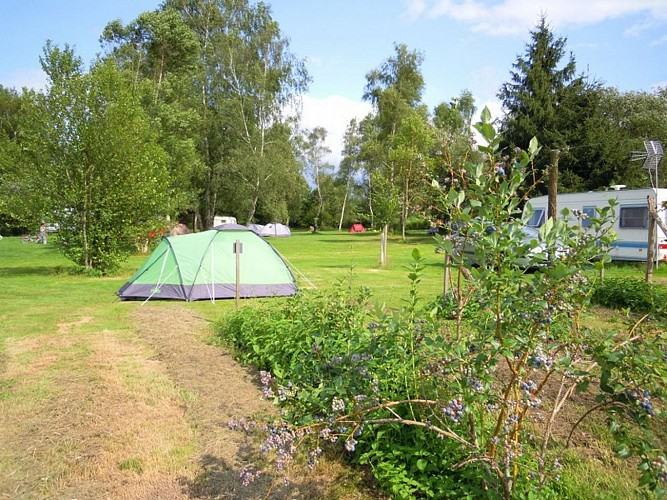 Camping les jardins d'ossau photo emplacement 4