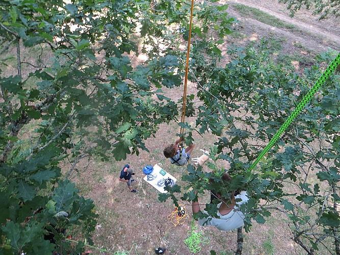 Les Ecureuils sur cordes - activité nature - Dordogne Périgord - enfant