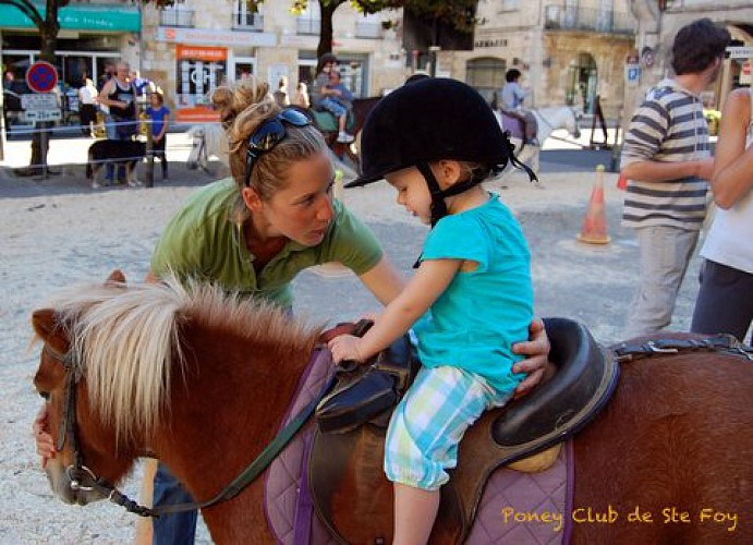 Poney - Poney Club de Sainte-Foy