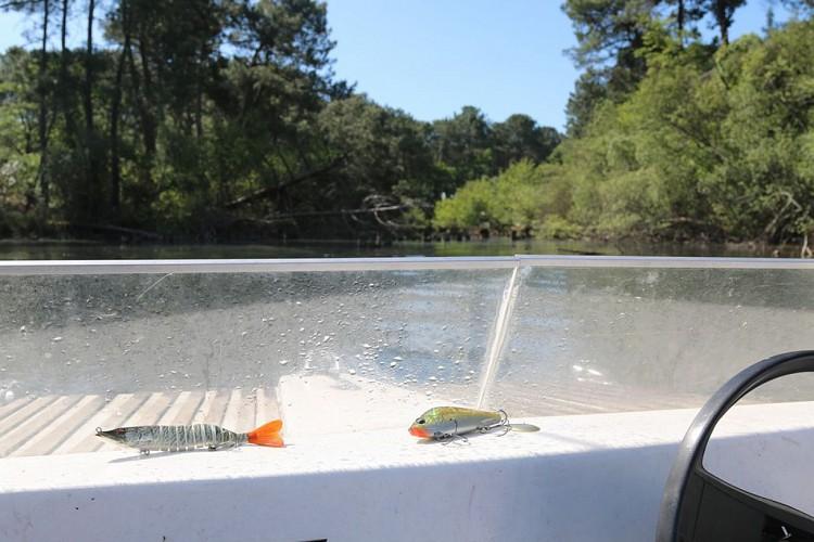 pêche-en-eau-douce5-grands-lacs-landes