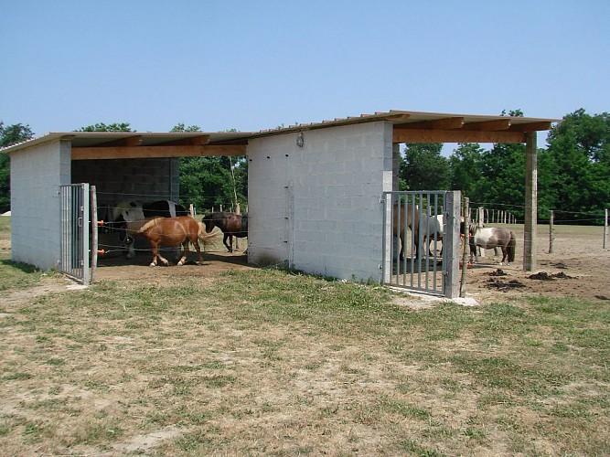 Centre équestre La Houn - poney