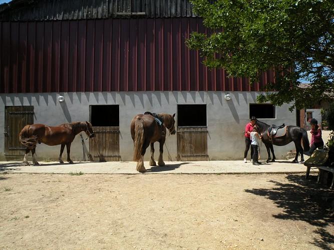 Centre Equestre de Claverie