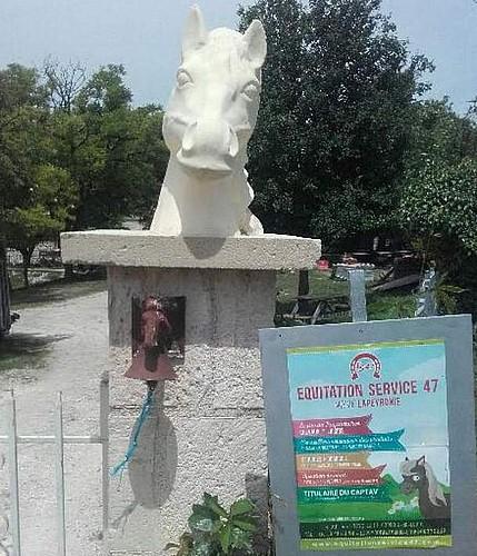 st-caprais-equitation-accueil-destination-agen-tourisme