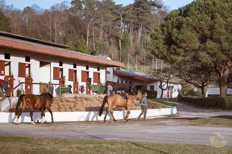 Pole-Equestre-de-Biarritz3