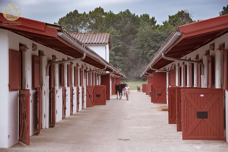Pole-Equestre-de-Biarritz4
