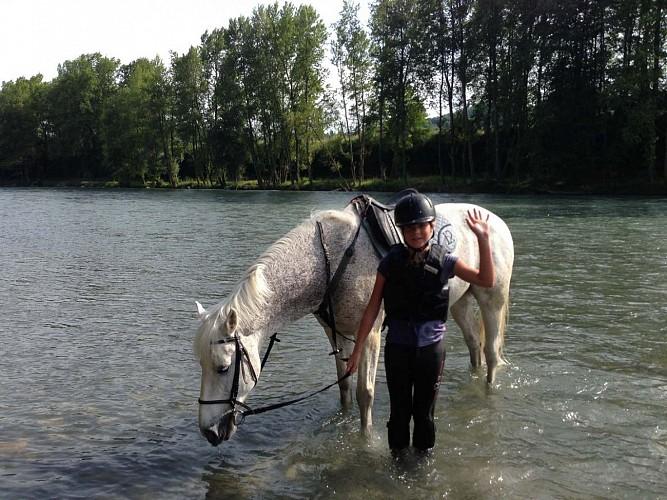 cheval detente - au bord du gave
