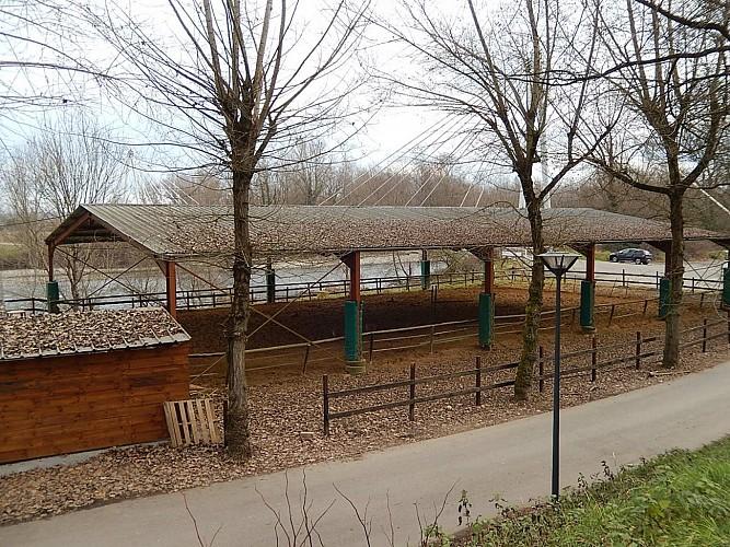Cheval Détente - Laroin - manège couvert