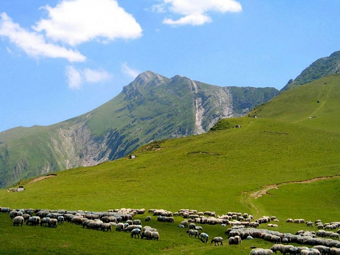 Accompagnateur montagne Daniel Hargain - pic d'Orhy - Saint Etienne de Baïgorry