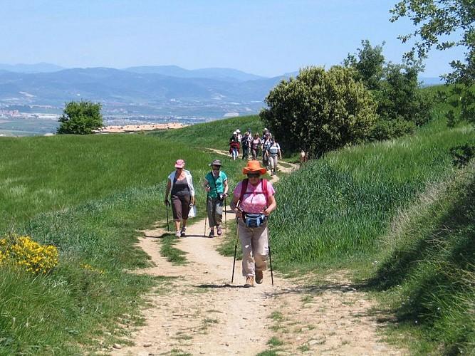 Accompagnateur montagne Daniel Hargain - groupe randonneurs - Saint Etienne de Baïgorry