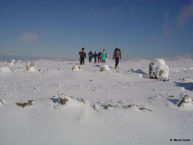 Mendi Gaiak - Randonnée raquettes neige Iraty
