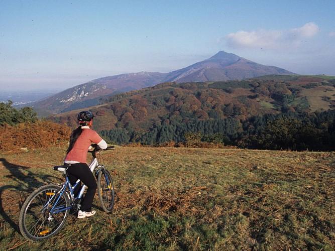 Location vélo au Pays Basque