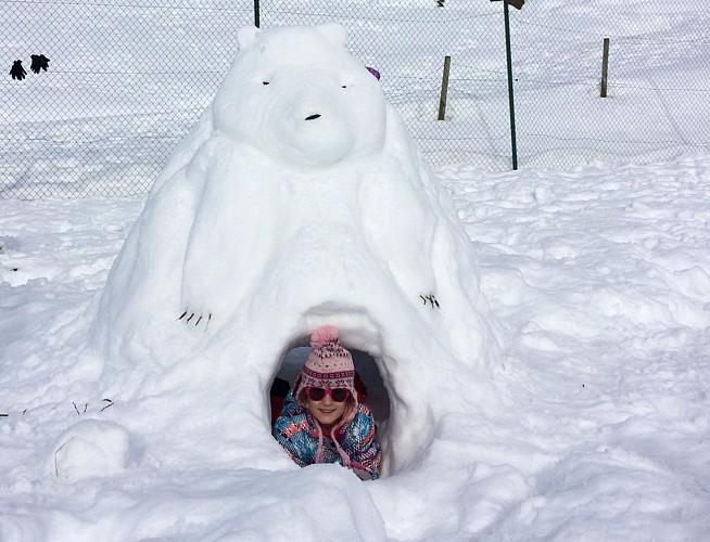 Bureau Montagne Snow-art