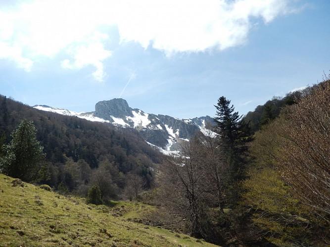 Naturaddict'64 - Rocher d'Aran  (Vernéjoul Guillaume)