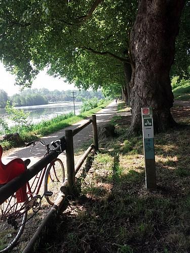 Les Cycles Guyonnet à Niort