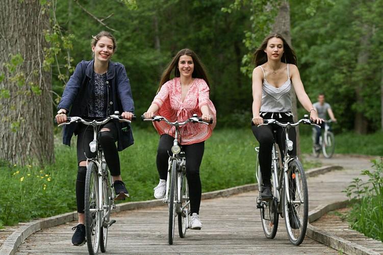 La Bicyclette du Marais à Coulon