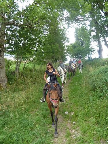 Le Relais Equestre Equinoxe à Saint-Rémy