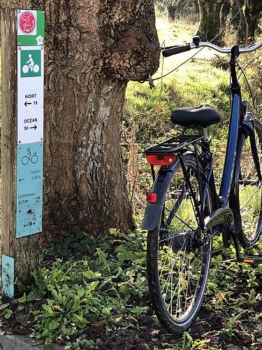 Venise Verte Evasion : loueur de vélos à Sansais-La Garette