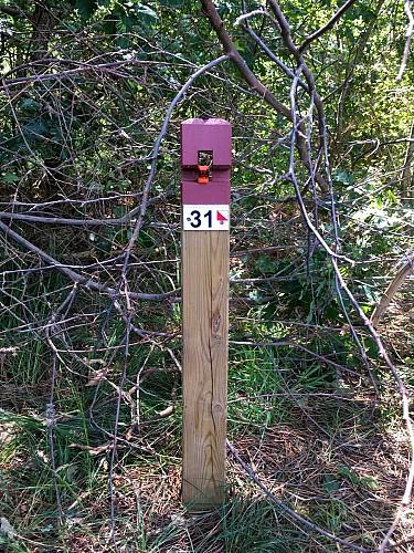 CLNT - LEON - Parcours permanent d'Orientation (5)