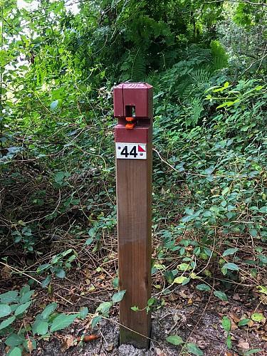 CLNT - LEON - Parcours permanent d'Orientation (9)