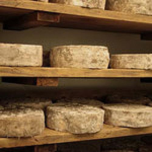 fromagerie-d-audrix-Bounichou--3-