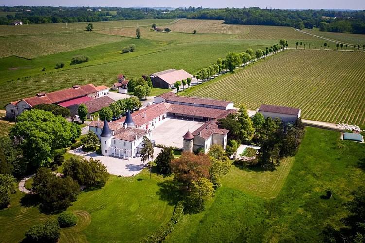 Airview-Chateau-de-Seguin-5