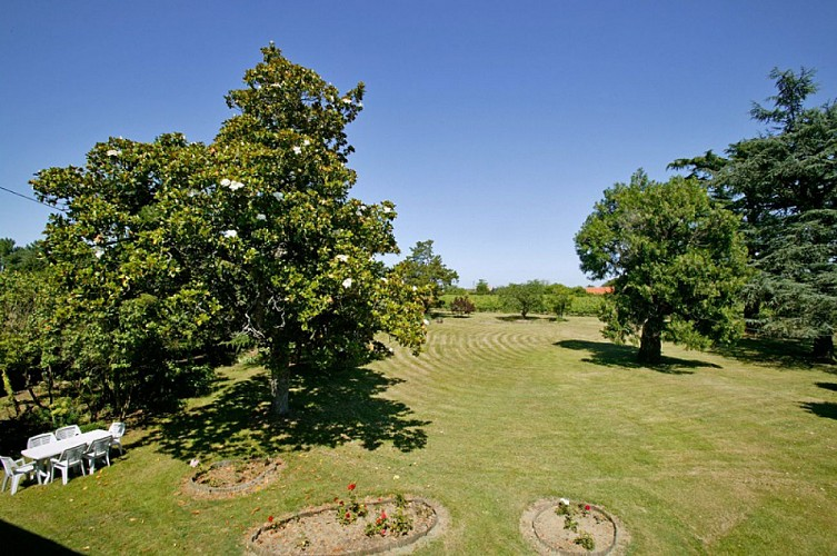 Magnolia-vue-jardin