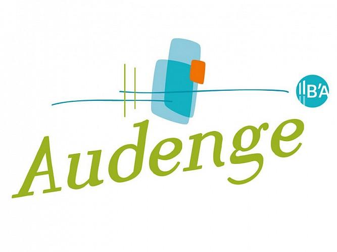 Logo Audenge