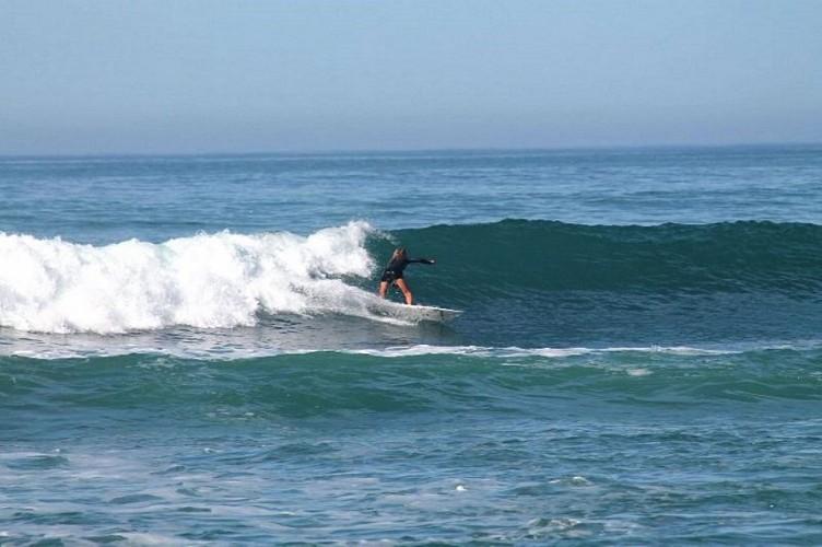 Surf-Cenitz