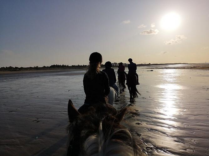 Courseulles Equitation