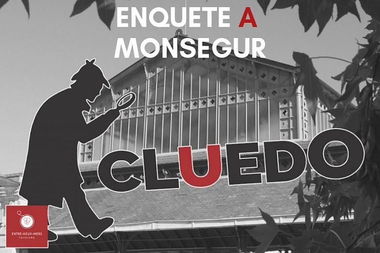 ENQUETE-A-MONSEGUR-3