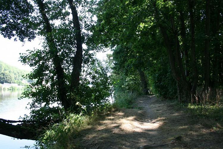Île de Caqueret, bord de Loire Decize